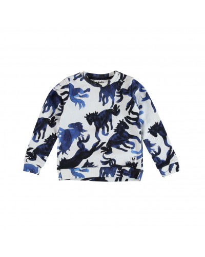 blue horses sweatshirt