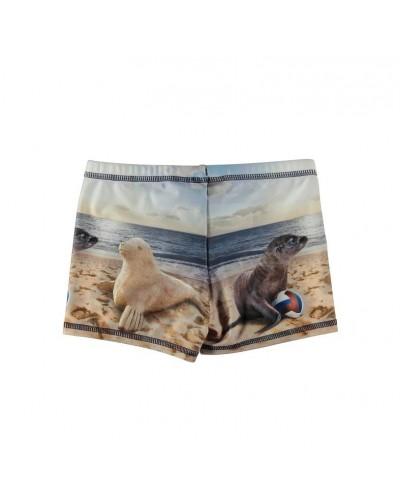 swim trunks sealion
