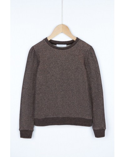 brown glitter sweatshirt
