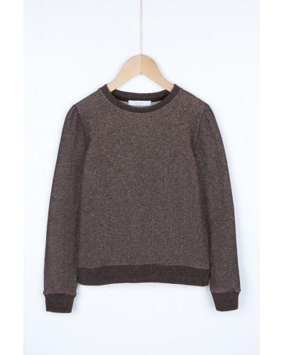 brown glitter sweatshirt