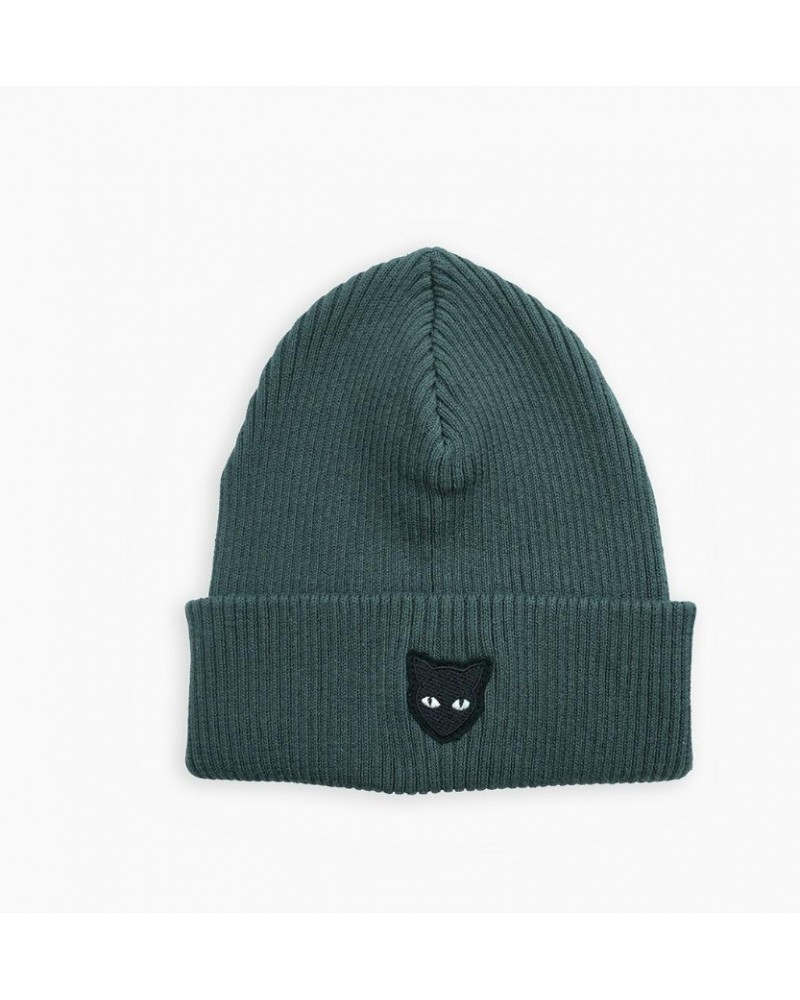 green beanie cat